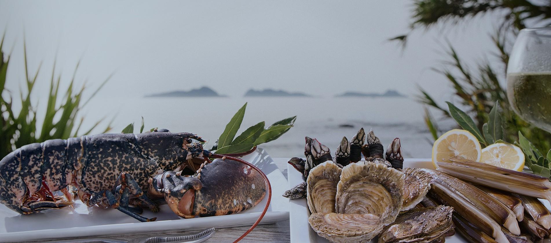 Seleccionamos los mejores ejemplares de pescado y marisco, como si lo hicieses tú mismo. De las lonjas gallegas directamente a tu casa.